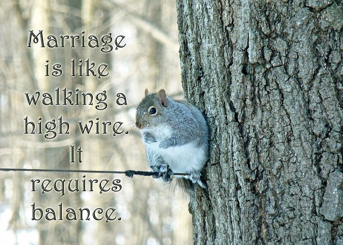 Marriage Greeting Card featuring the photograph The Sage Of The High Wire by Mother Nature