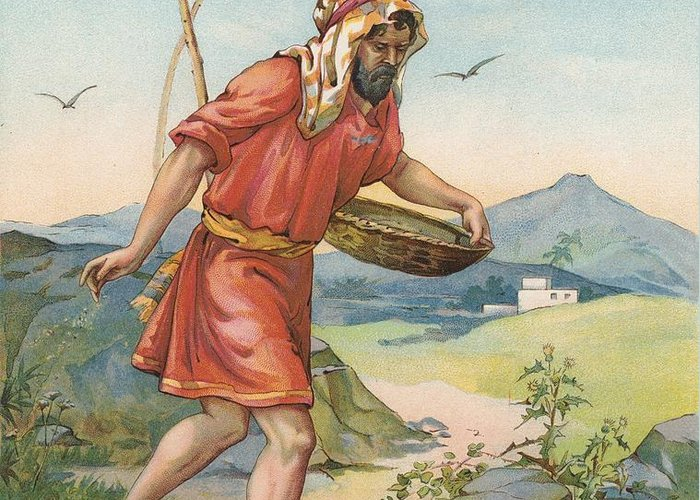 Bible Stories; Biblical; The Sower; Parable; Parables; Jesus Christ; Seed On The Ground Greeting Card featuring the painting The Sower by Ambrose Dudley
