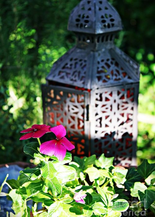 Greeting Card featuring the photograph The Tranquil Garden by Amy Delaine