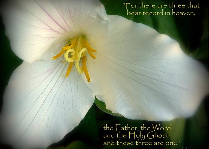 Cindy Greeting Card featuring the photograph The Trinity Scripture Art by Cindy Wright