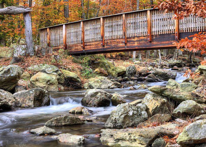 Cunningham Falls Greeting Card featuring the photograph The Walk by JC Findley