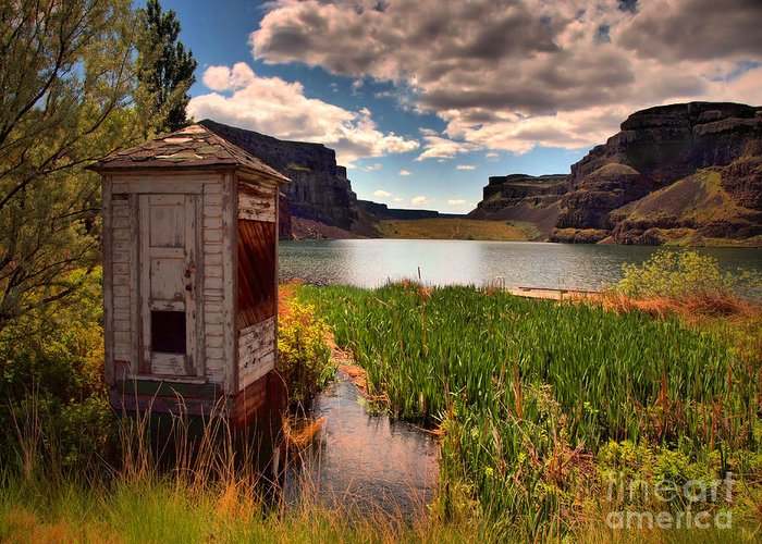 Shed Greeting Card featuring the photograph The Water Shed by Tara Turner