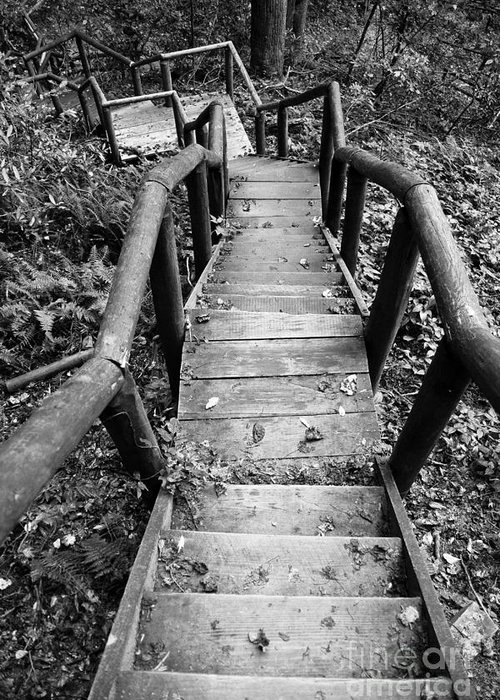 Stairs Greeting Card featuring the photograph The Way Down by Olivier Steiner