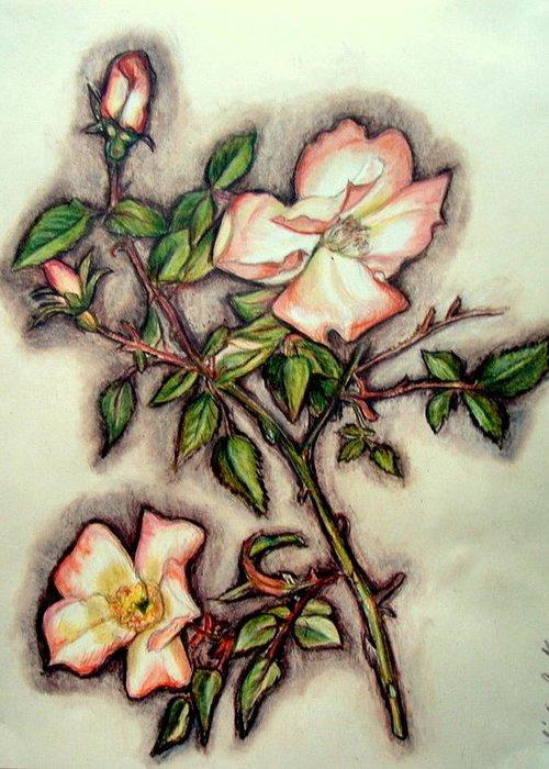 9 wild rose no original ink painting