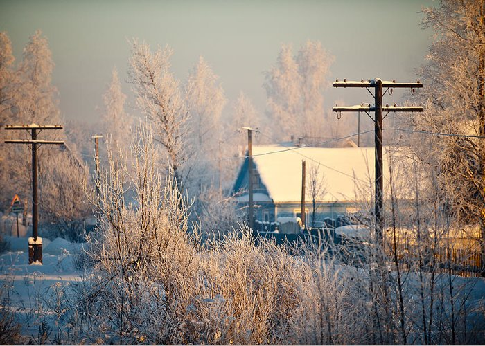 Winter Greeting Card featuring the photograph The Winter Country by Nikolay Krusser