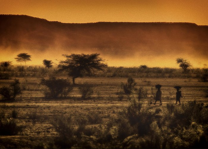 Northern Greeting Card featuring the photograph This Is Namibia No. 12 - Walking The Desert by Paul W Sharpe Aka Wizard of Wonders