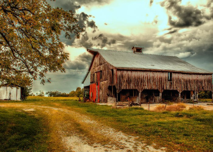 Barn Greeting Card featuring the photograph This Old Barn by Bill Tiepelman