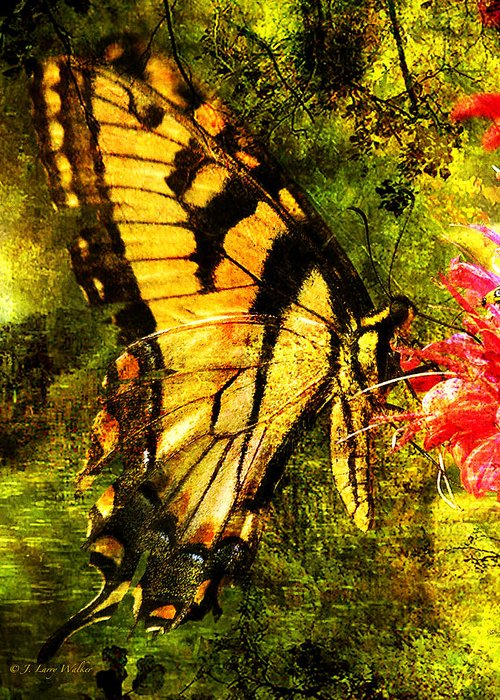 J Larry Walker Greeting Card featuring the digital art Tiger Swallowtail Butterfly Happily Feeds by J Larry Walker