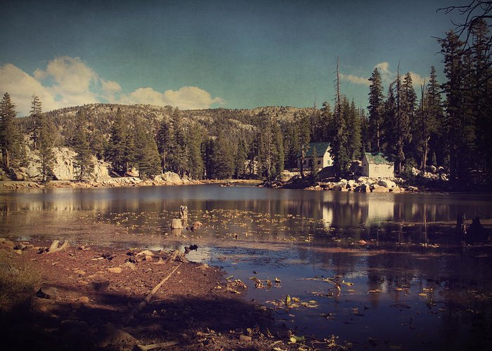 Mosquito Lake Greeting Card featuring the photograph Time Always Reveals by Laurie Search