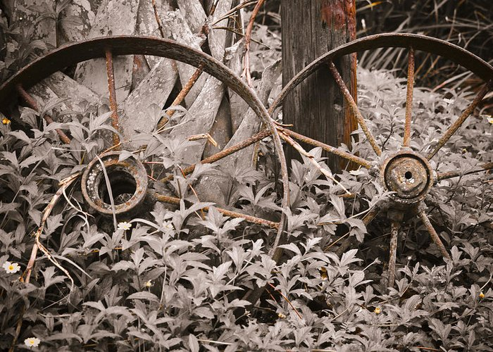 Wagon Wheels Greeting Card featuring the photograph Time Forgotten by Carolyn Marshall