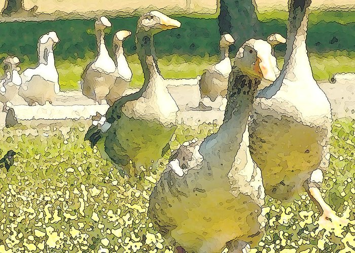 Goose Greeting Card featuring the painting Time To Get Moving by Artist and Photographer Laura Wrede