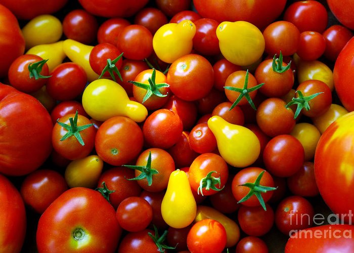 Abundance Greeting Card featuring the photograph Tomatoes Background by Carlos Caetano