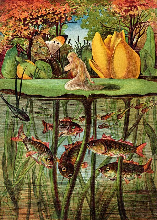 Fish; Carp; Goldfish; Pond; Butterfly; Under Water; Poucette Greeting Card featuring the painting Tommelise Very Desolate On The Water Lily Leaf In 'thumbkinetta' by Hans Christian Andersen and Eleanor Vere Boyle