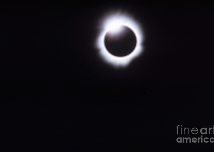 Total Solar Eclipse Greeting Card featuring the photograph Total Solar Eclipse by Photo Researchers