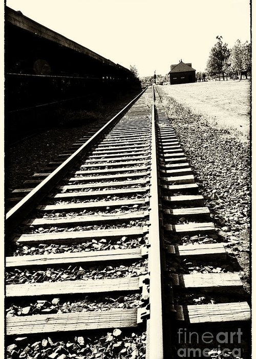 Train Greeting Card featuring the photograph Tracks Of Our Ancestors by Leslie Leda