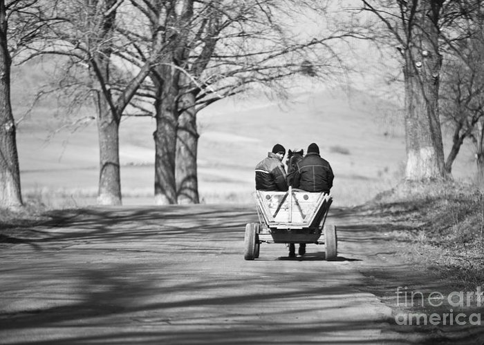 Road Greeting Card featuring the photograph Transportation by Gabriela Insuratelu