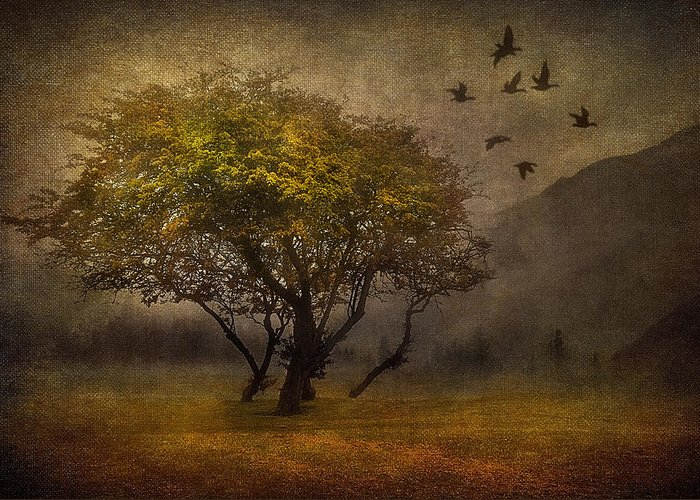 Art Greeting Card featuring the digital art Tree And Birds by Svetlana Sewell