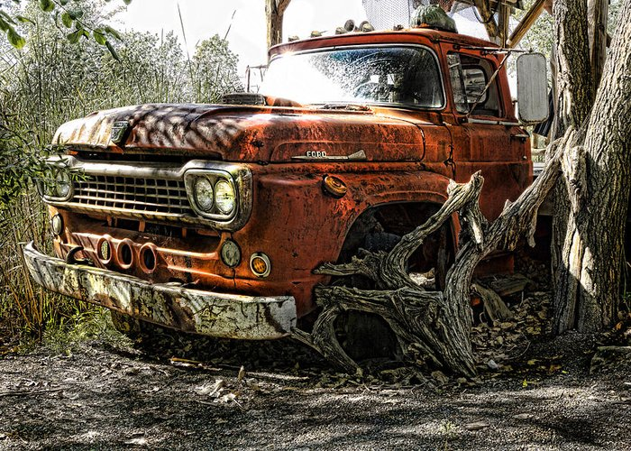 Ford Greeting Card featuring the photograph Tree Truck by Peter Chilelli