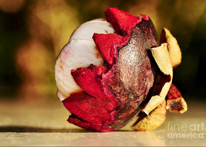 Photography Greeting Card featuring the photograph Tropical Mangosteen - Ready To Eat by Kaye Menner