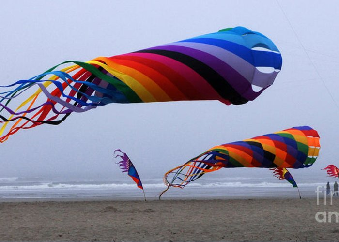 Kites Greeting Card featuring the photograph Go Fly A Kite 9 by Bob Christopher