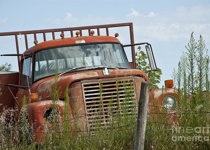 Old Truck Greeting Card featuring the photograph Turned Out To Pasture by Wilma Birdwell