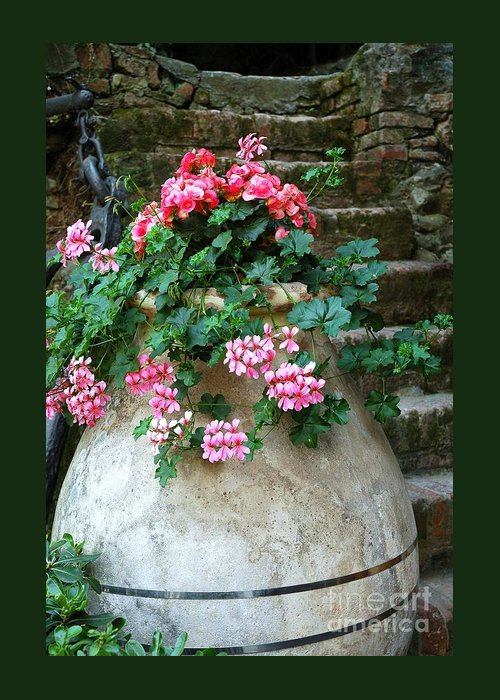 Italy Greeting Card featuring the photograph Tuscan Earthenware Pot And Flowers by Allen Beatty