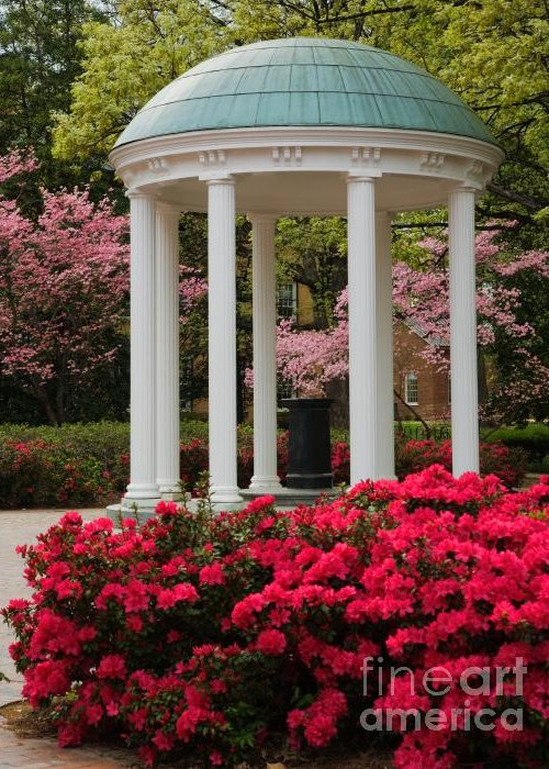 Spring Greeting Card featuring the photograph Unc Well In Spring by Frank Boellmann
