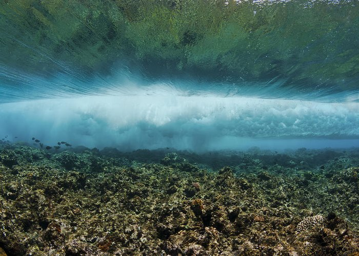 Blue Greeting Card featuring the photograph Under An Ocean Wave by Dave Fleetham
