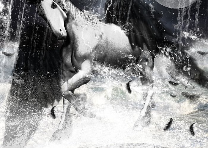 Unicorn Greeting Card featuring the photograph Unicorn's Complexities by Lourry Legarde