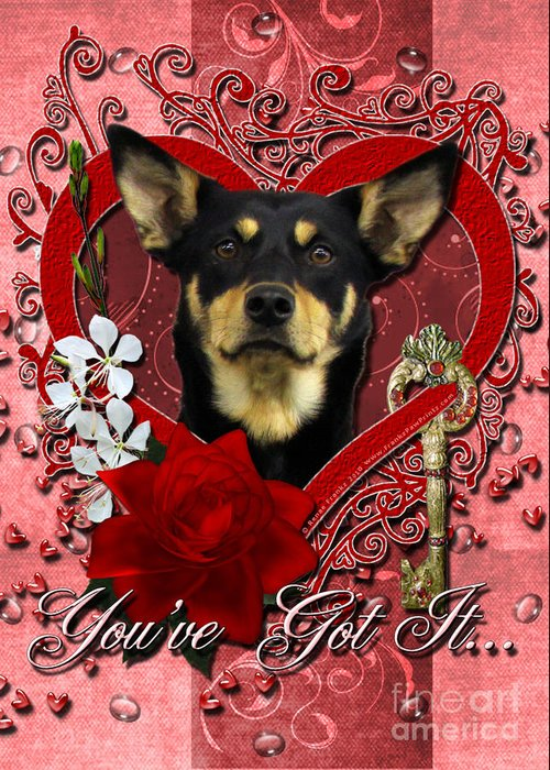 Australian Kelpie. Australian Greeting Card featuring the digital art Valentines - Key To My Heart Australian Kelpie by Renae Laughner