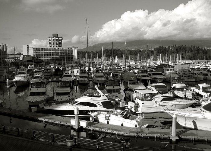 Vancouver Marina Greeting Card featuring the photograph Vancouver Marina by Kamil Swiatek