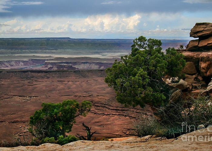 Panoramic Greeting Card featuring the photograph View Of Canyonland by Robert Bales