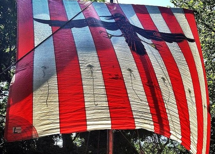Mobilephotography Greeting Card featuring the photograph Viking Flag @ Syttende Mai by Natasha Marco