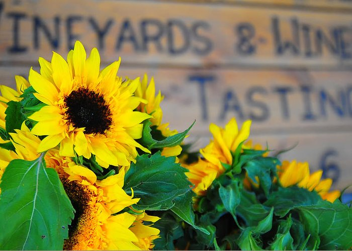 Wine Greeting Card featuring the photograph Vineyards And Winery Tastings by Brian Mollenkopf