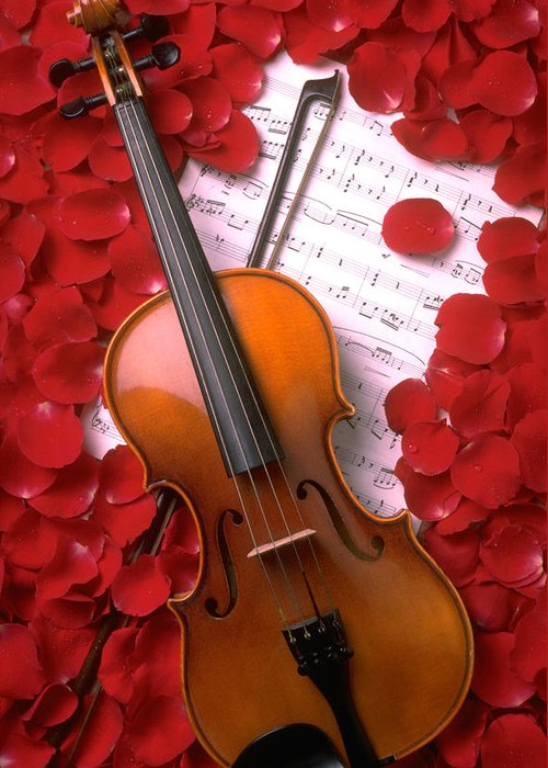 Violin Greeting Card featuring the photograph Violin On Sheet Music With Rose Petals by Garry Gay