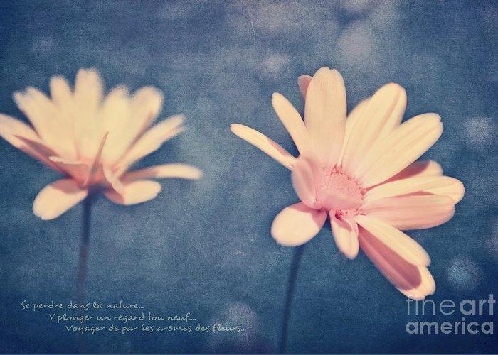 Flowers Greeting Card featuring the photograph Voyager De Par Les Aromes Des Fleurs by Aimelle