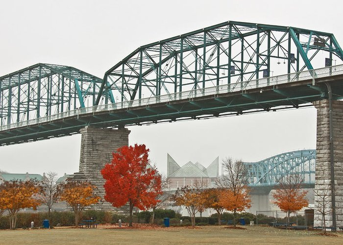 Walnut Street Bridge Greeting Card featuring the photograph Walnut Street Bridge by Tom and Pat Cory