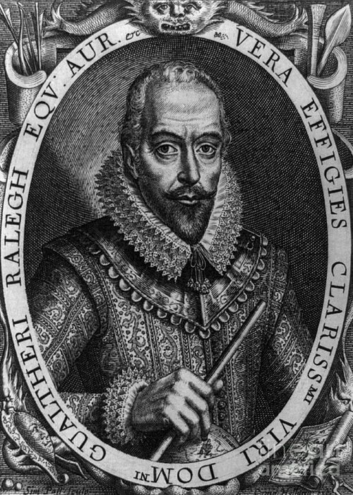 History Greeting Card featuring the photograph Walter Raleigh, English Courtier by Photo Researchers