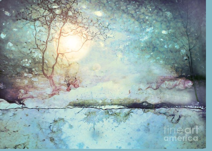 Light Greeting Card featuring the photograph Wandering In The Light by Tara Turner
