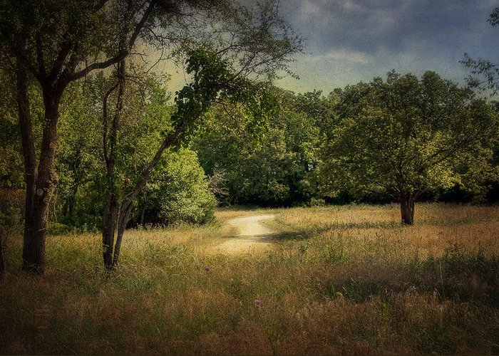 Landscape Greeting Card featuring the photograph Wandering Path I by Tamyra Ayles