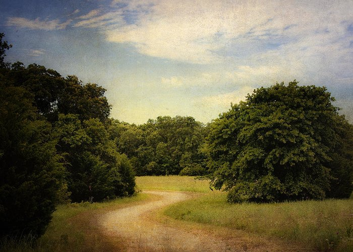 Landscape Greeting Card featuring the photograph Wandering Path II by Tamyra Ayles
