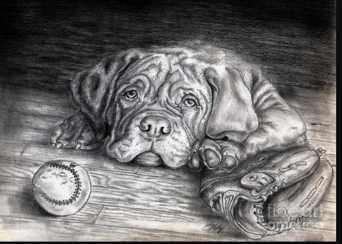 Dog Greeting Card featuring the drawing Want To Play by Kathleen Kelly Thompson