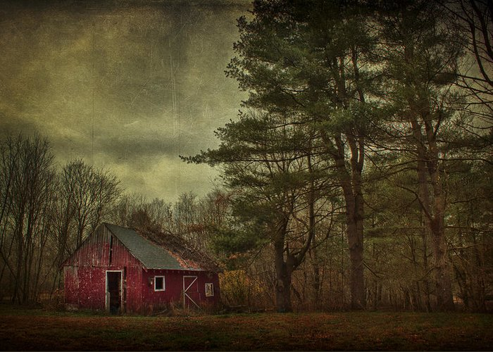 Barn Greeting Card featuring the photograph Watching Over Me by Evelina Kremsdorf