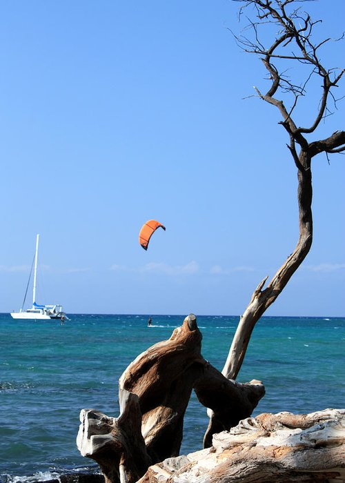 kite Boarding Greeting Card featuring the photograph Water Sports In Hawaii 2 by Karen Nicholson