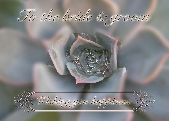 Wedding happiness wishes to bride and groom succulent greeting wedding greeting card featuring the photograph wedding happiness wishes to bride and groom succulent by m4hsunfo