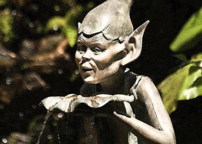 Garden Greeting Card featuring the photograph Well Gremlin by Heiko Koehrer-Wagner