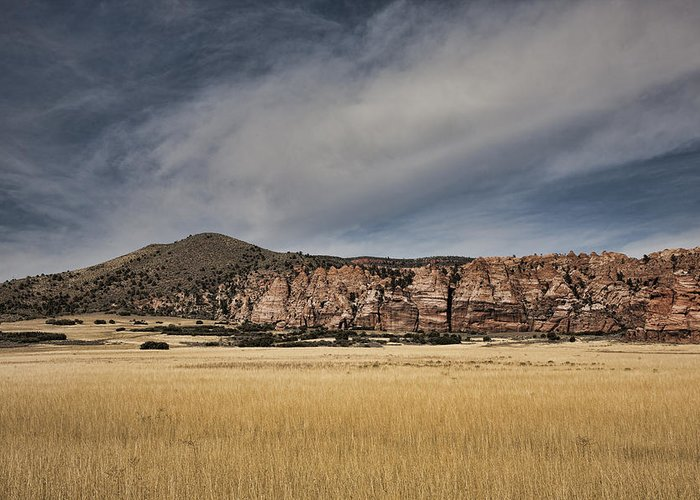 Wheatfield Greeting Card featuring the photograph Wheatfield Zion National Park by Hugh Smith