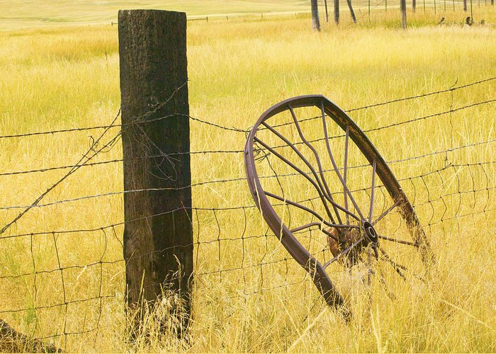 Posts Greeting Card featuring the photograph Wheel Looking For A Tractor by Rich Franco