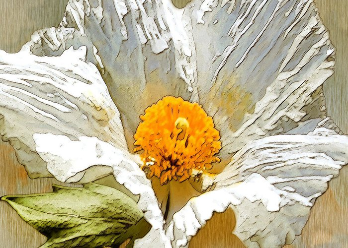 White Flower Greeting Card featuring the drawing White Paper Flower by Artist and Photographer Laura Wrede