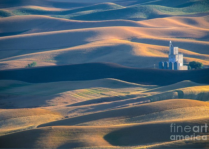 Palouse Greeting Card featuring the photograph Whitman County Grain Silo by Sandra Bronstein